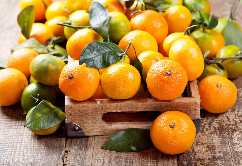 agricultura sostenible alimentos sostenibles